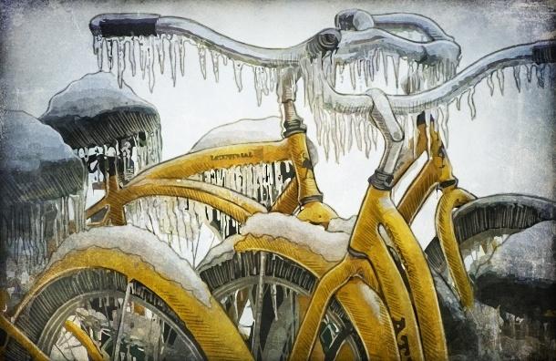 Если в Петербурге не построят велодорожки - креативный класс сбежит, останутся одни гастарбайтеры