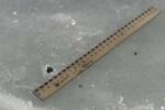 В лаборатории, где исследуют Челябинский метеорит, ведут онлайн-трансляцию