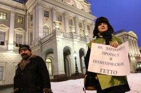 Петербургский закон о митингах принят во втором чтении – практически без поправок