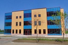 Девять участников массовой драки в Купчино депортируют в Азербайджан
