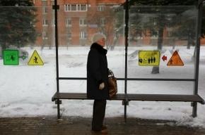 В Купчино время ожидания транспорта можно будет узнать при помощи QR-кода