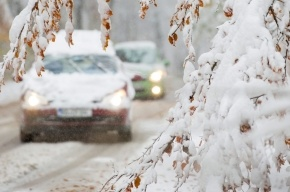 Жители Ленобласти заявили, что уничтожили дорогу, на ремонте которой чиновники хотели попилить бюджет