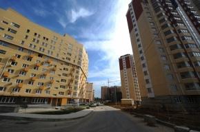 На границе Петербурга и Ленобласти построят новый поселок на 14 тысяч человек