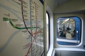 Блогеры создали альтернативную схему для петербургского метро