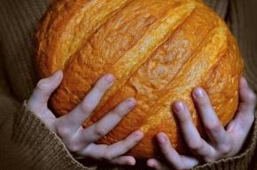 Медведев призвал не допускать спекуляций с хлебом
