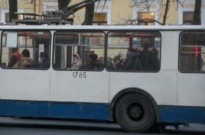 Семилетнюю потеряшку из троллейбусного парка забрали родители