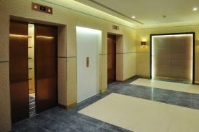 В Петербурге установят 706 новых лифтов
