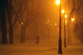 В Петербург и Ленобласть идут снегопады и сильный ветер