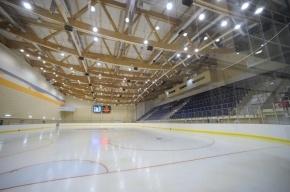 Ледовый дворец  и Зал хоккейной славы построят на юге Москвы