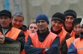 Голодные дворники-мигранты вышли на пикет в Петербурге