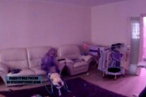 Няня избила девятимесячного ребенка в Красноярске, родители сняли все на видео