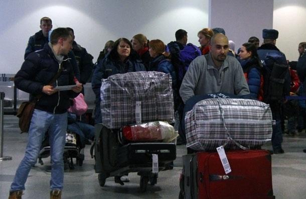 Тревога: в аэропортах Москвы растет число краж, но раскрываемость преступлений падает
