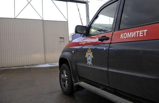 По факту смерти 11-летней девочки в Дмитрове возбуждено уголовное дело