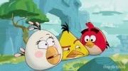 Мультсериал Angry Birds Toons: Фоторепортаж