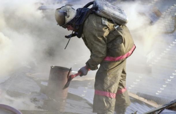 Пожар в Солнечногорске. Погибла женщина, выпрыгнув с 9-го этажа