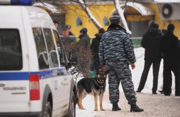 Грабёж среди бела дня. В Рузском районе задержаны злоумышленники, нападавшие на пенсионеров