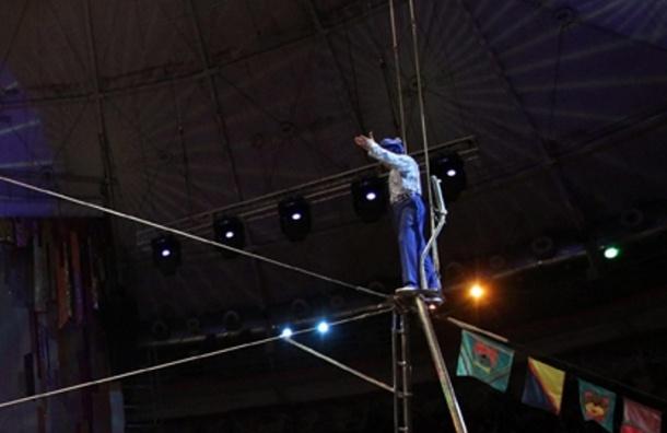 В московском цирке проверят соблюдение правил безопасности - СКР