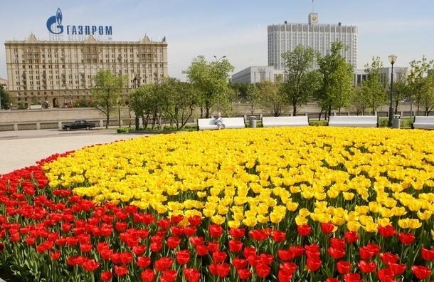 В центре Москвы появятся 19