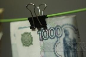 На каждой российской банкноте живет около 30 тысяч бактерий
