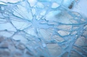 В разборке водителей стекла автобуса побили бейсбольными битами