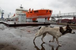 Верфи съедут с Ново-Адмиралтейского острова до 2018 года