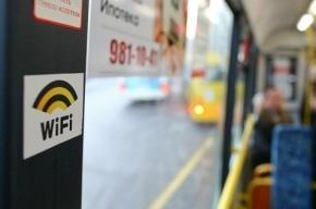 Петербуржцы могут выбрать маршруты, по которым пойдут Wi-Fi- автобусы