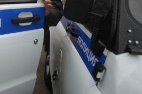 Петербурженку, задушившую семилетнюю дочь, отправят в психушку