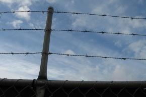 Житель Ленобласти, забивший кирпичом 11-летнего мальчика, отправится в колонию на 20 лет