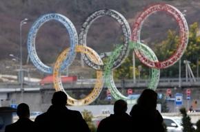 Петербуржцы получат по 5 млн за победу на Олимпиаде 2014 в Сочи