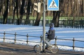 Школа для велосипедистов возобновит работу в Петербурге в конце апреля
