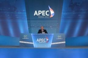 Арестованы новые фигуранты дела о хищениях при проведении саммита АТЭС