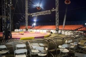 Полтавченко купит себе кресло в Цирке на Фонтанке за 500 долларов