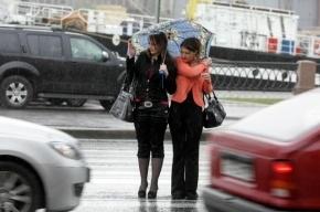 Синоптики пообещали петербуржцам теплый и дождливый апрель