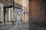 Фоторепортаж: «Белый медведь в Петербурге»