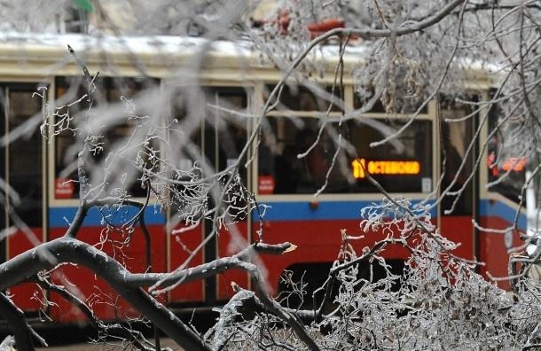 В Москве пожилая женщина и ее внучка попали под трамвай. Они госпитализированы в тяжелом состоянии