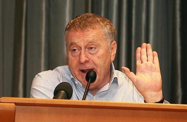 Жириновский объяснил, почему не подал декларацию супруги
