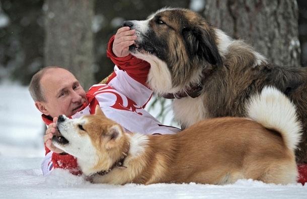Владимир Путин, Баффи и Юмэ. Фото на природе