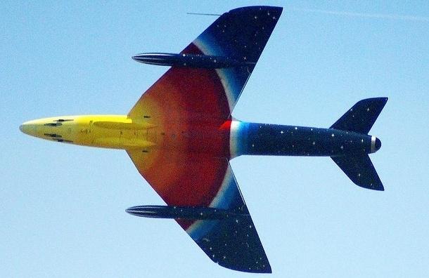 Самолет Петербург - Самара экстренно сел в Москве