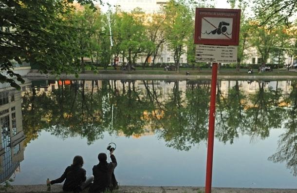 Программа озеленения центра Москвы: где и когда