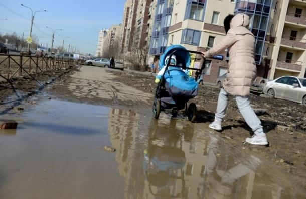 Коммунальщики Петербурга устраивают «катакомбы» на дорогах города