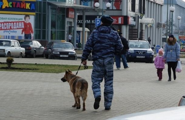 Нетрезвая помощница следователя сбила полицейского-кинолога в Подмосковье