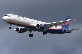 Минтранс предложил бить электрошоком буйных пассажиров самолетов