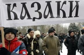 Комитет по молодежной политике возглавит немолодой казак