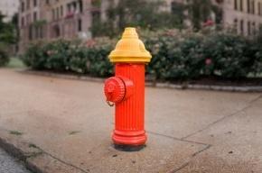 В Петербурге пожарный гидрант бил фонтаном воды до пятого этажа