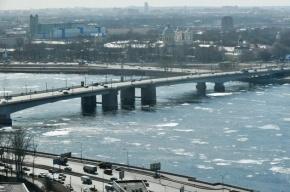 В Петербурге установится теплая весенняя погода