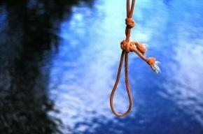 Роскомнадзор запретил статью «Википедии» о самоубийстве