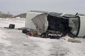 Микроавтобус со стажерами полиции попал в ДТП: четверо погибших