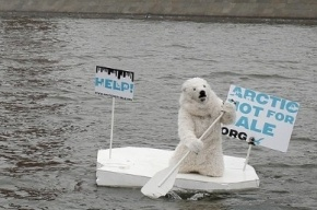 Белый медведь на льдине с плакатом «Help!» проплыл у Кремля