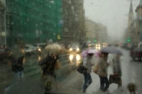 Завтра в Петербурге последний день зимы