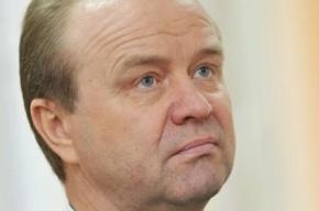 Главу Невского района обвинили в крышевании нелегалов и создании трущоб